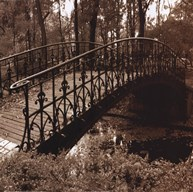 Wrought Iron Bridge II