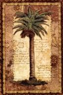 Classic Palm I  Fine-Art Print