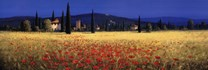 Tuscan Panorama - Poppies