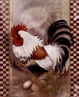 Coat Of Many Colors Rooster