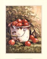 Pail of Apples
