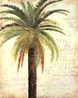 Palms and Scrolls II