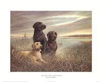 All Grown Up on Grassy Sound Fine-Art Print