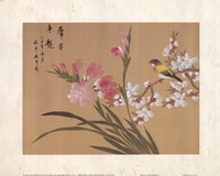 Peony Blossom II Fine-Art Print