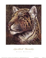 Spotted Beauty Fine-Art Print