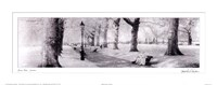 Green Park London Fine-Art Print