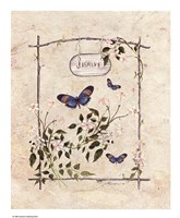 Jasmine Butterfly Fine-Art Print
