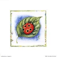 Little Ladybug Fine-Art Print