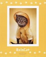 Raincat Fine-Art Print