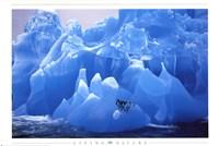 Penguins on Blue Ice Fine-Art Print