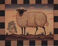 Farm Sheep Fine-Art Print