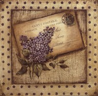 Paris Lilac Fine-Art Print