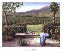 Overlooking the Vineyard Fine-Art Print