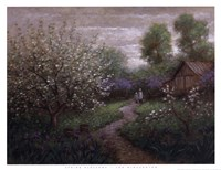 Spring Blossom Fine-Art Print