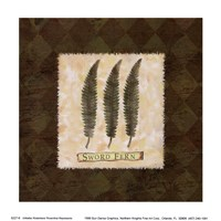 Sword Fern Fine-Art Print