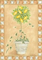 Tuscan Fruit II Fine-Art Print