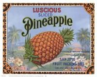 Luscious Pineapple Fine-Art Print
