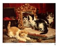 Kittens, 1893 Fine-Art Print