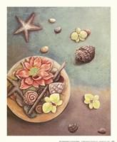 Zen Contentment I Fine-Art Print