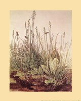 Tall Grass Fine-Art Print