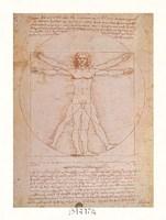 Study of Human Proportions Fine-Art Print