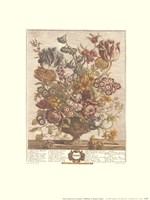 April/Twelve Months of Flowers, 1730 Fine-Art Print