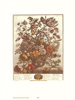 May/Twelve Months of Flowers, 1730 Fine-Art Print