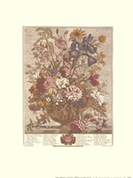 June/Twelve Months of Flowers, 1730 Fine-Art Print