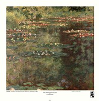 Pool with Waterlilies, 1904 Fine-Art Print