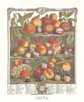 August/Twelve Months of Fruits, 1732 Fine-Art Print