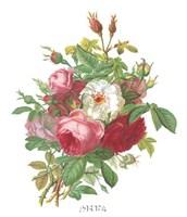 Antique Roses Fine-Art Print