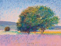 Trees in Provence Fine-Art Print