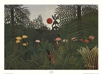 Jungle Sunset Fine-Art Print