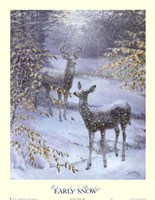 Early Snow Fine-Art Print