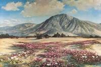 Desert in Spring Fine-Art Print
