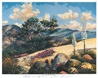 Mountain Desert Fine-Art Print
