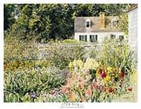 Late Summer Garden Fine-Art Print