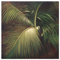 Tropical Seclusion Fine-Art Print