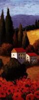 Tuscan Poppies Panel I Fine-Art Print