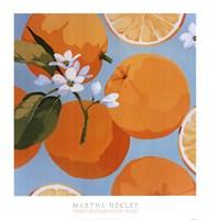 Fresh Oranges Fine-Art Print