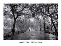 Poet's Walk, New York City Fine-Art Print