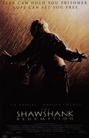 The Shawshank Redemption Freedom Wall Poster