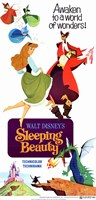 Sleeping Beauty Awaken to a World of Wonders Wall Poster