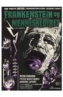 Evil of Frankenstein Wall Poster