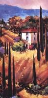 Hills of Tuscany Fine-Art Print