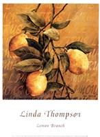 Lemon Branch Fine-Art Print
