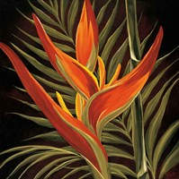 Birds of Paradise I Fine-Art Print