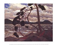 West Wind Fine-Art Print