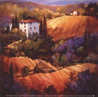 Evening Glow Tuscany Fine-Art Print