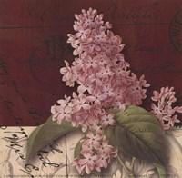 Postcard Lilac Fine-Art Print